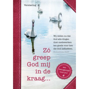Zó greep God mij in de kraag - Een getuigenis over verslaving